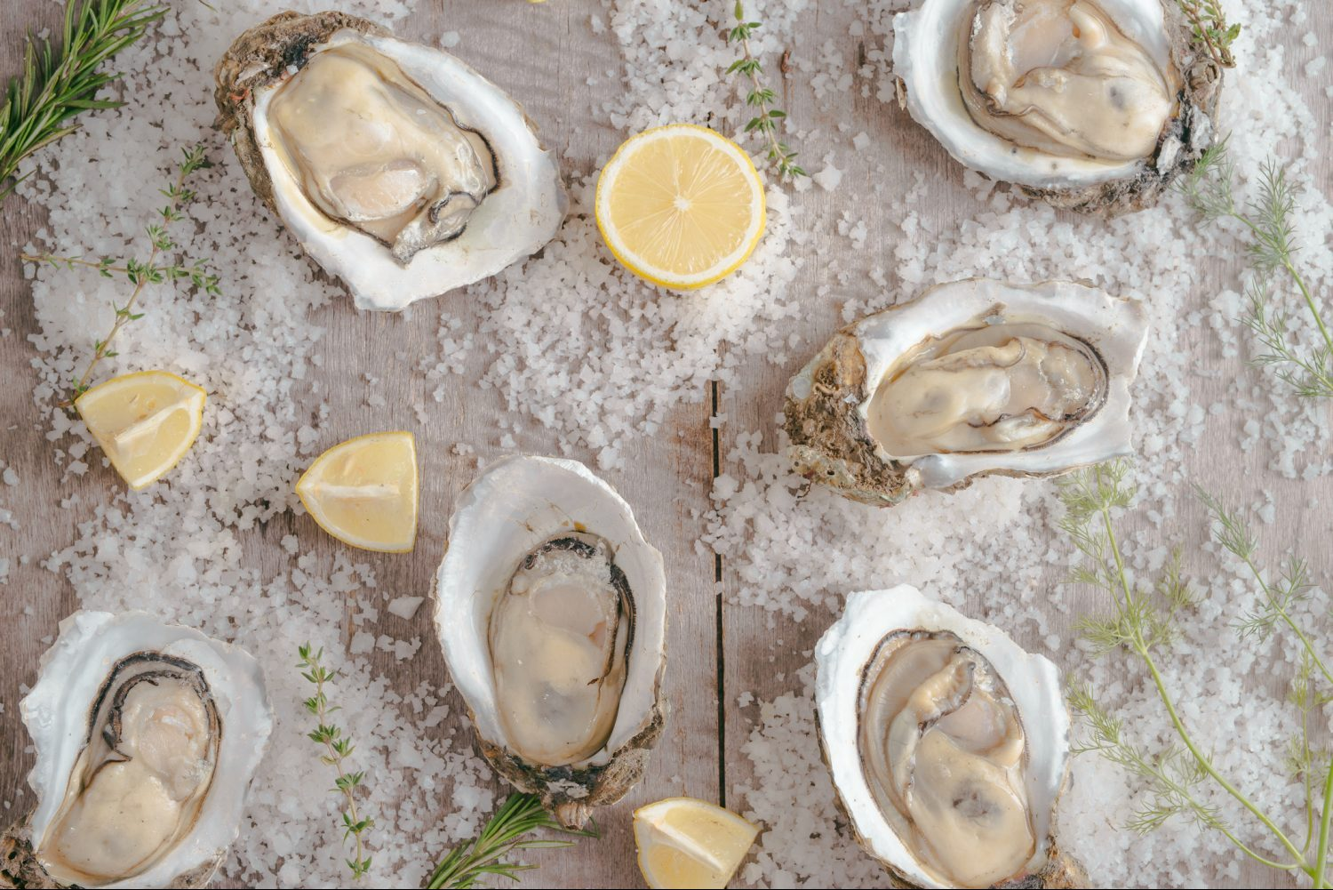 Oysters are one of the most popular items in Charleston.